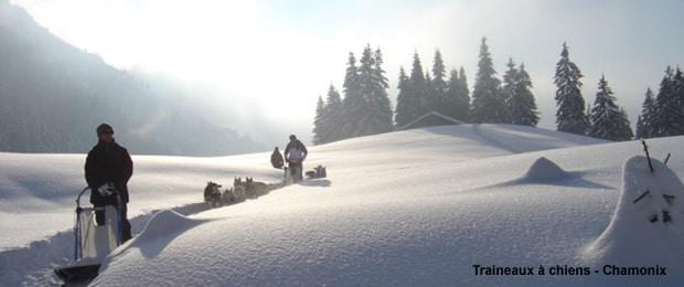 Randonnée en traineau à chiens à Chamonix