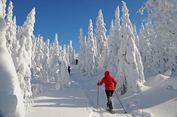 Le ski-hok : entre ski de rando et raquettes