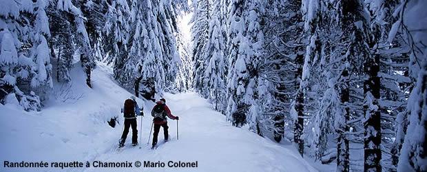 Randonnée en raquettes à neige à Chamonix