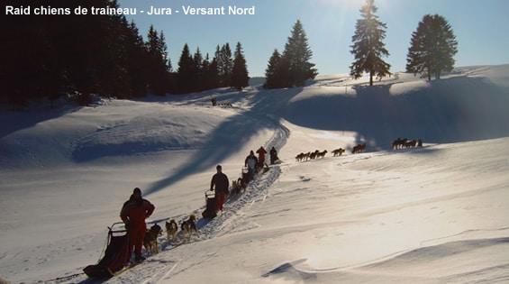 Randonnée chiens de traîneau dans le Jura