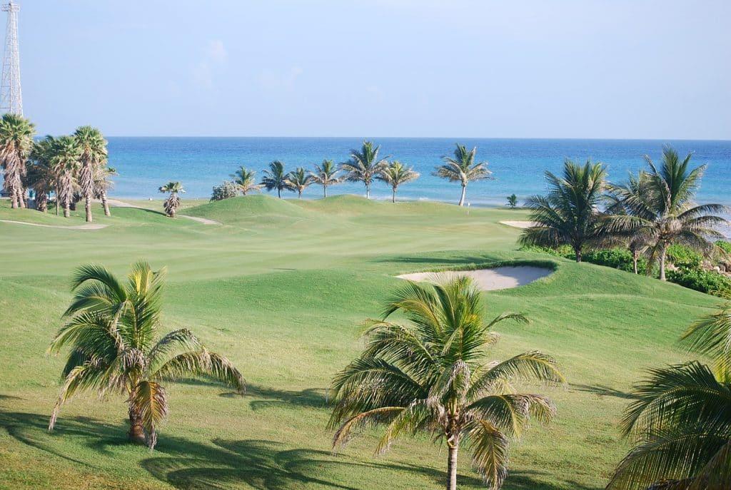 parcours de golf palmiers mer